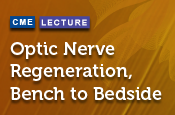 Optic Nerve Regeneration, Bench to Bedside