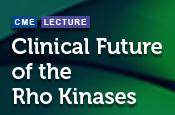 Clinical Future of the Rho Kinases
