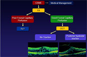 What's New in the Management of Diabetic Macular Edema