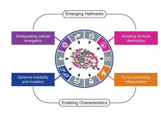Emerging Hallmarks and Enabling Characteristics