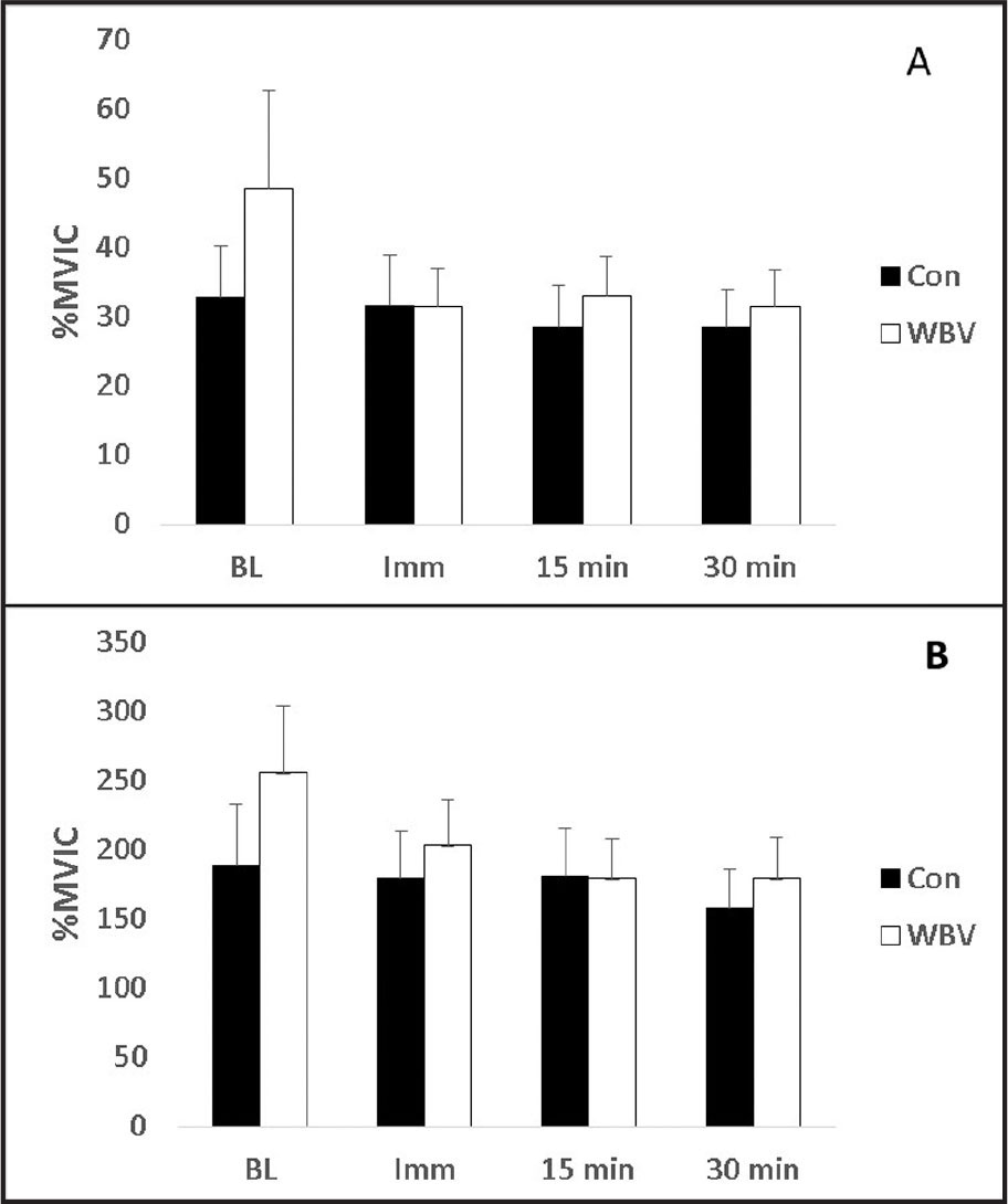Effects of whole body vibration (WBV) on tibialis anterior muscle (A) preparatory and (B) loading phase electromyography amplitudes. No significant differences were identified between measurement intervals or conditions. CON = control; % MVIC = maximal voluntary isometric contractions; BL = baseline; Imm = immediately
