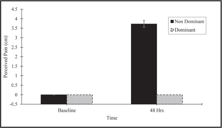 Confirmation of delayed onset muscle soreness (DOMS) 48 hours after induction protocol.