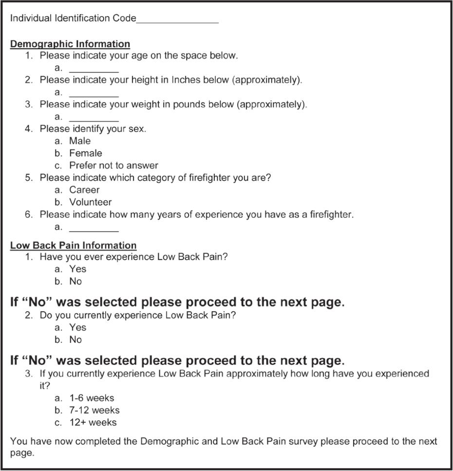 Low Back Pain Survey.