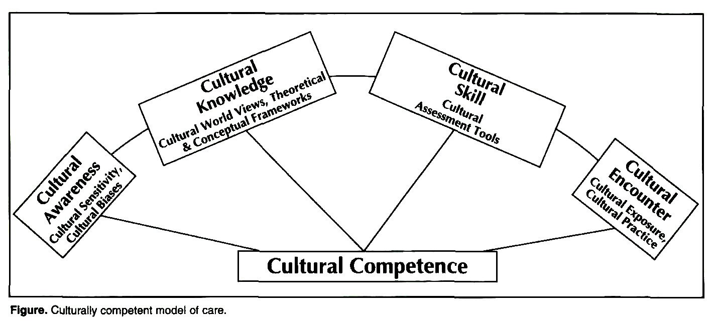 campinha bacote model of cultural competency Download a pdf of this article abstract: using the campinha-bacote model of cultural competence, this paper examines the integration of measures for enhancing internship students' knowledge, values, and skills for work with culturally diverse groups.