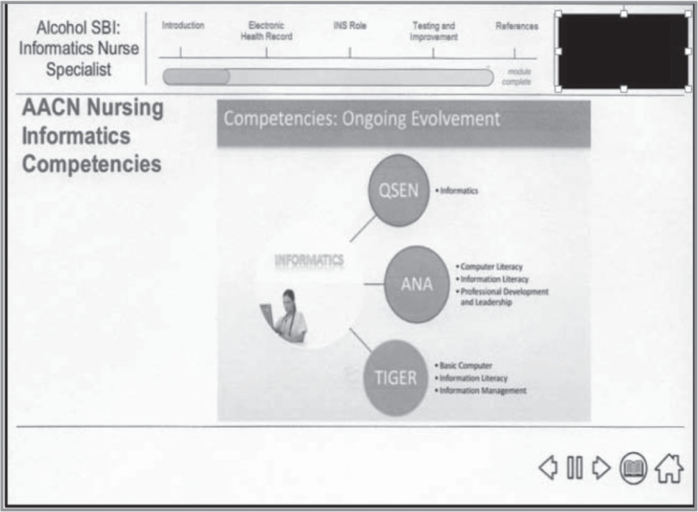 Nurse informaticist. Note. SBI = screening and brief intervention; INS = informatics nurse specialist; AACN = American Association of Colleges of Nursing; QSEN = Quality and Safety Education for Nurses; ANA = American Nurses Association; TIGER = Technology Informatics Guiding Education Reform.