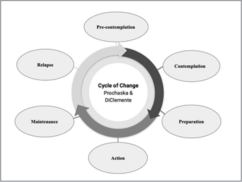The transtheoretical model is made up of six stages of change. The precontemplation stage occurs prior to a person thinking about making a change. The contemplation stage occurs when there is awareness that a change is needed. That may occur when an organization becomes aware of the cost of orientation and of the significant role preceptors play in the orientation process. The third stage is preparation, which involves a plan for change, such as using a preceptor selection instrument. The fourth stage, action, takes place when there is a commitment to change, such as consistently using a preceptor selection instrument to choose preceptors. Stages five and six, maintenance and relapse, are vital if change is to have a lasting impact. Planning for maintenance and relapse from the beginning of the change process allows organizations to implement measures during the change process to ensure sustainability (Neill & Neill, 2013).
