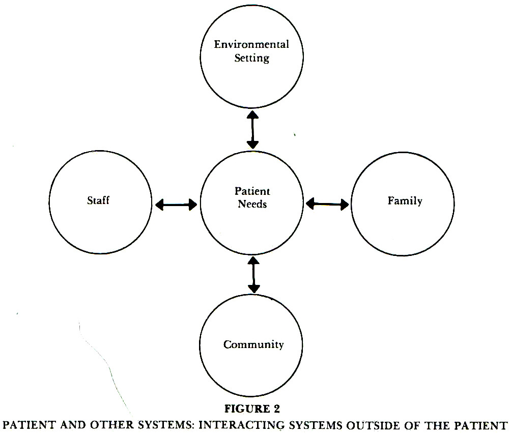 FIGURE 2PATIENT AND OTHER SYSTEMS: INTERACTING SYSTEMS OUTSIDE OF THE PATIENT