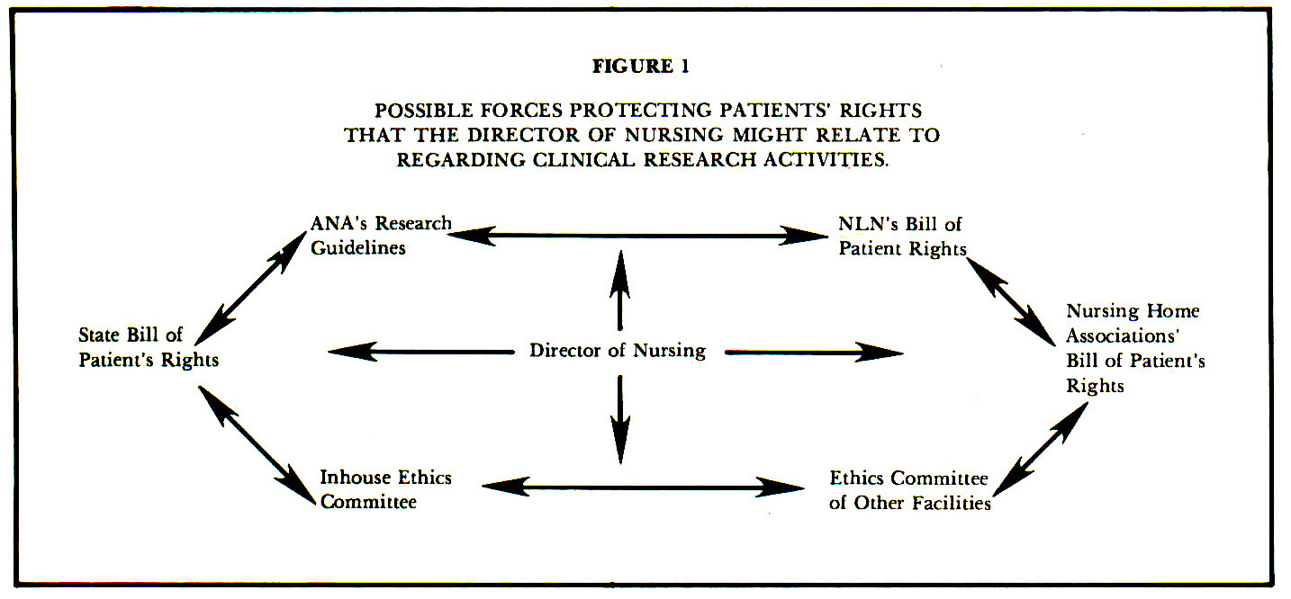 FIGURE 1POSSIBLE FORCES PROTECTING PATIENTS' RIGHTS THAT THE DIRECTOR OF NURSING MIGHT RELATE TO REGARDING CLINICAL RESEARCH ACTIVITIES.
