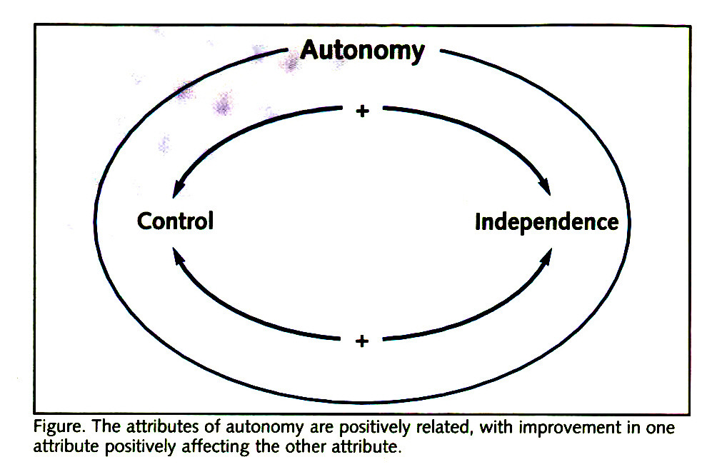 Figure. The attributes of autonomy are positively related, with improvement in one attribute positively affecting the other attribute.