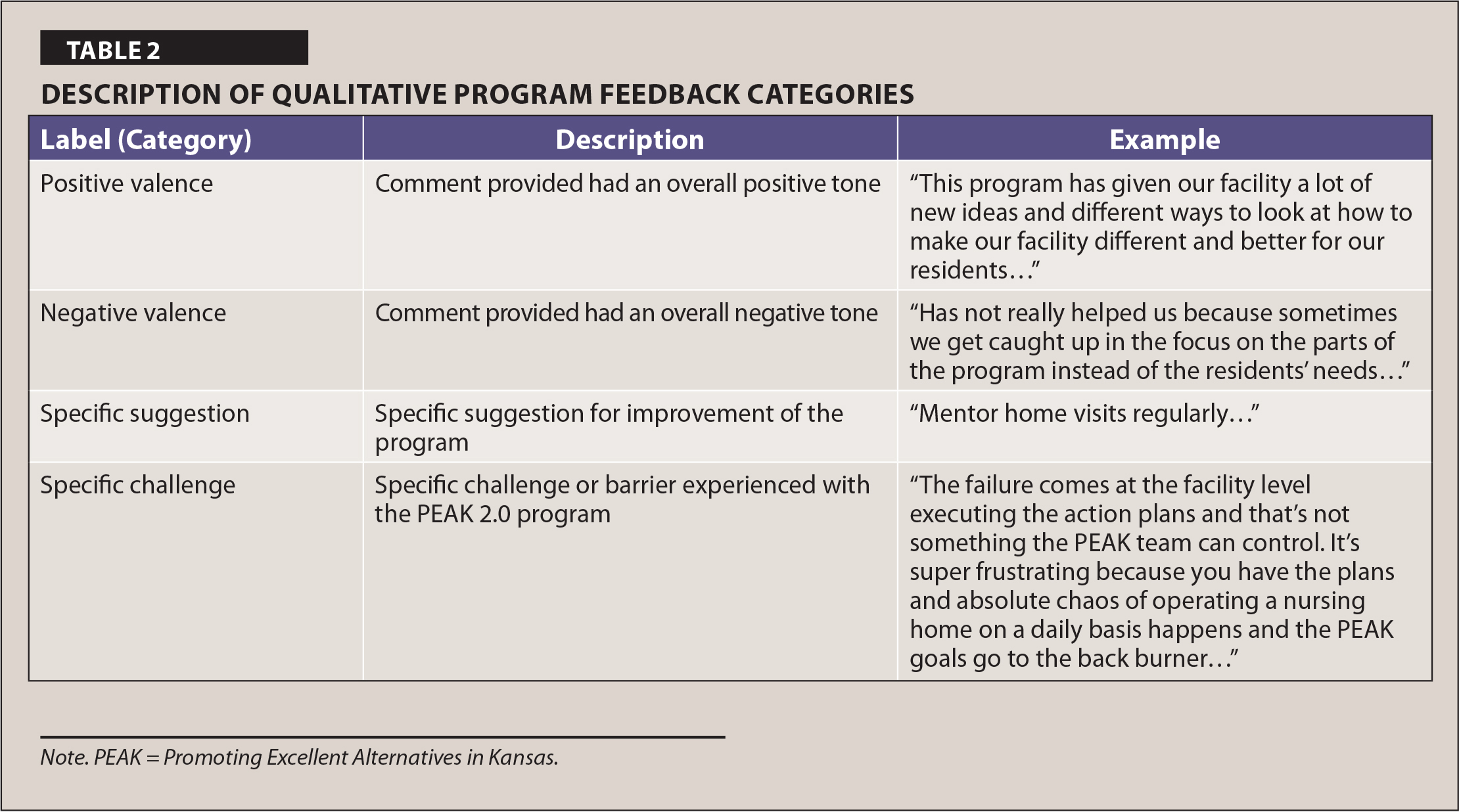 Description of Qualitative Program Feedback Categories