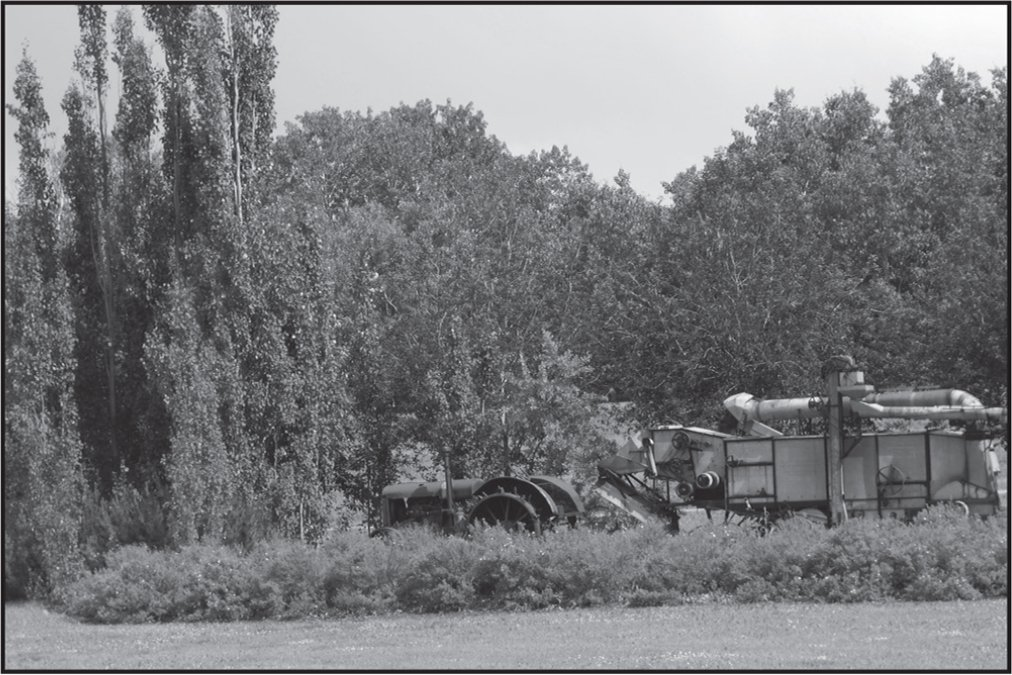 Participant photograph of an old tractor.
