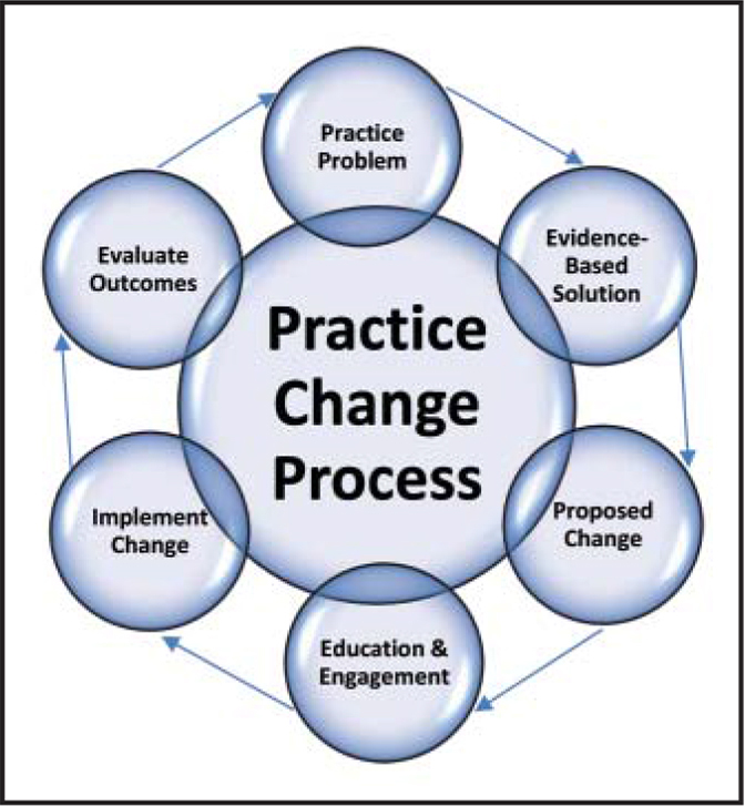 Practice change process.