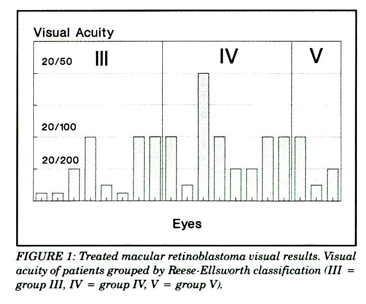 FIGURE 1: Treated macular retinoblastoma visual results. Visual acuity of patients grouped by Reese-Ellsworth classification (III = group III, IV = group IV, V = group Vf.