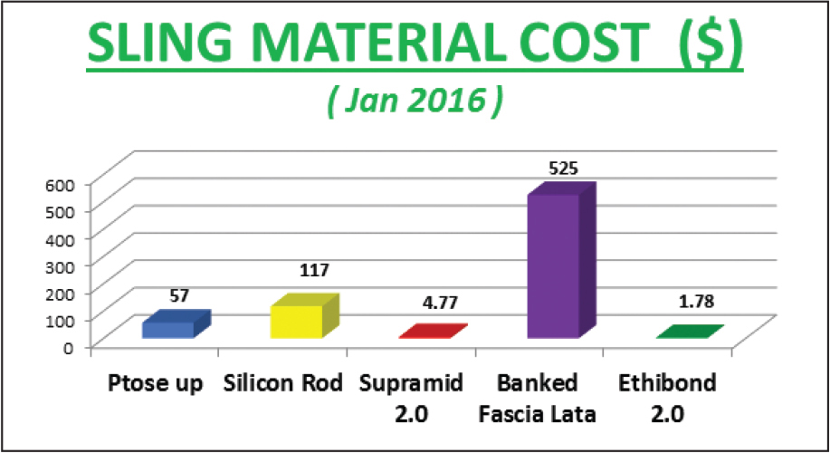 Cost of various sling materials. Supramid is manufactured by S. Jackson, Alexandria, VA, and Ethibond is manufactured by Ethicon, Somerville, NJ.