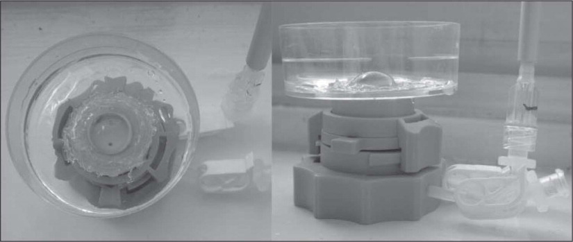 Photograph of the modified Barron artificial anterior chambers used to hold the specimens throughout the experimental period and enable the external corneal surface to be bathed in culture medium to the level of the limbus (left – top view; right – side view). Between measurements, and while in organ culture, each Petri dish was covered by its lid to maintain surface humidity.