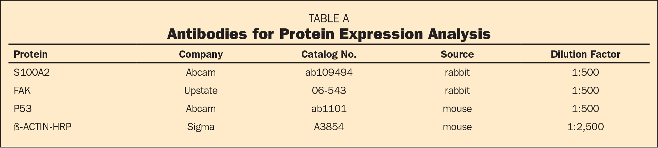 Antibodies for Protein Expression Analysis