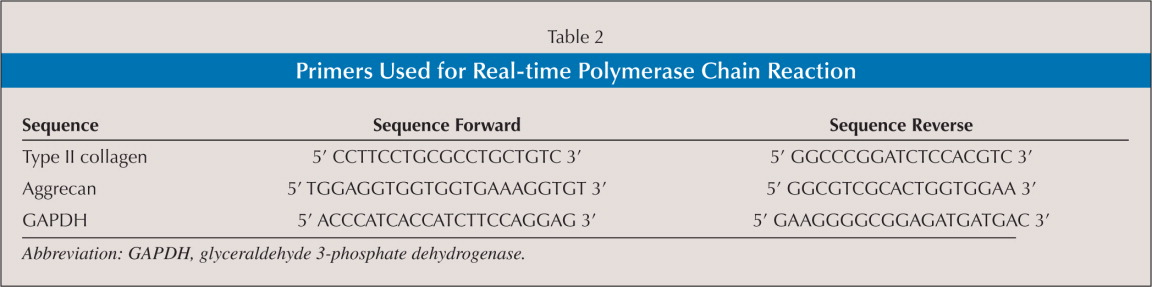 Primers Used for Real-time Polymerase Chain Reaction