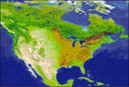 Blastomycosis Endemic Areas (brown) on Satellite View of the United States and Canada. Courtesy of the National Aeronautics and Space Administration (http://visibleearth.nasa.gov).
