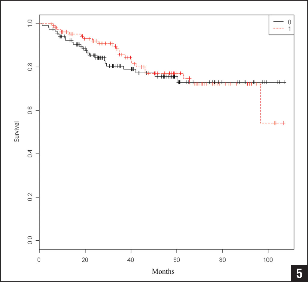Kaplan-Meier estimator of initial surgery according to guidelines with wide resection margins and initial surgery not according to guidelines without wide resection margins.