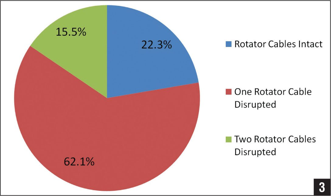 Pie chart showing rotator cable integrity among patients with preserved forward flexion.