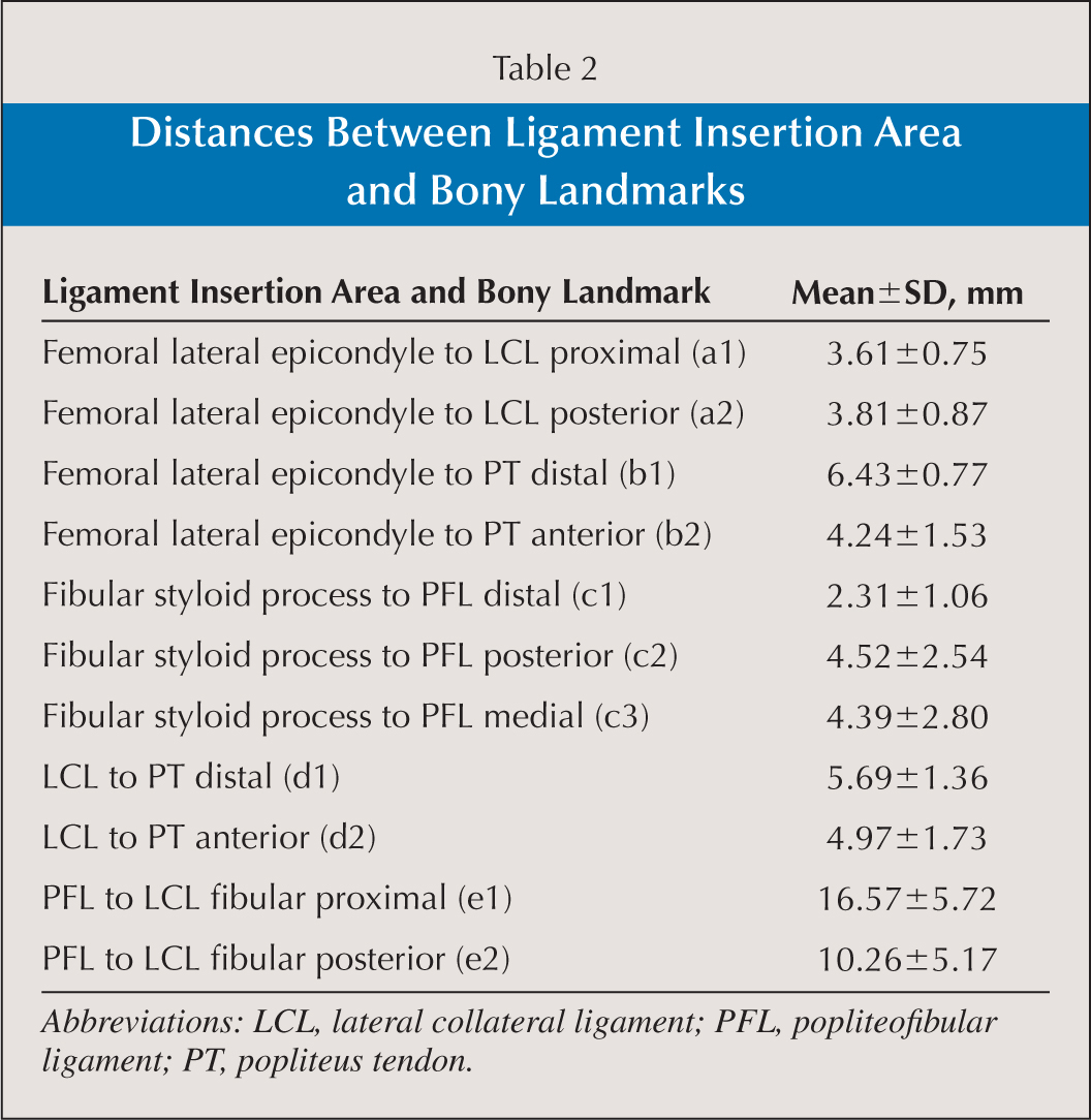 Distances Between Ligament Insertion Area and Bony Landmarks
