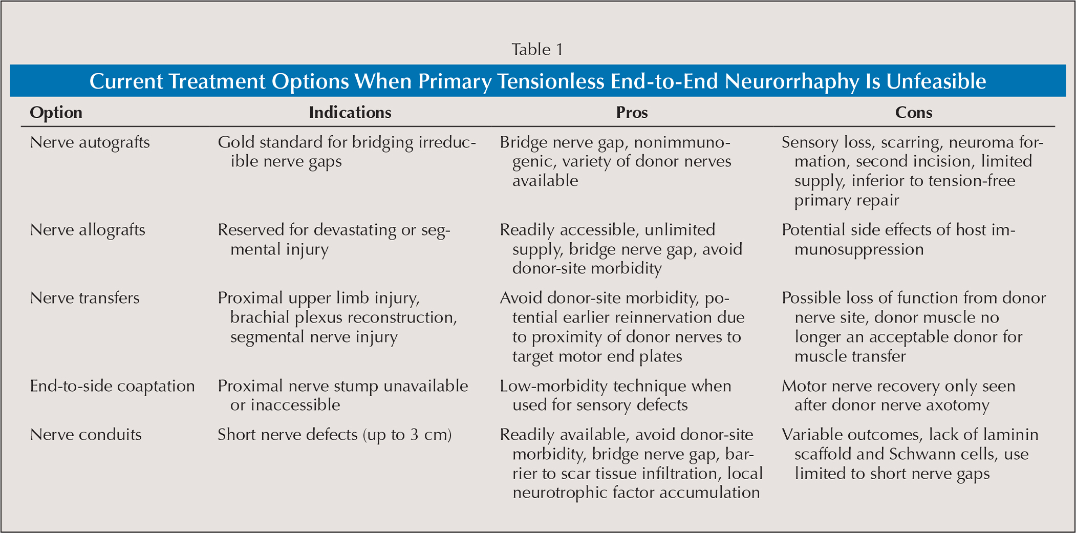 Current Treatment Options When Primary Tensionless End-to-End Neurorrhaphy Is Unfeasible