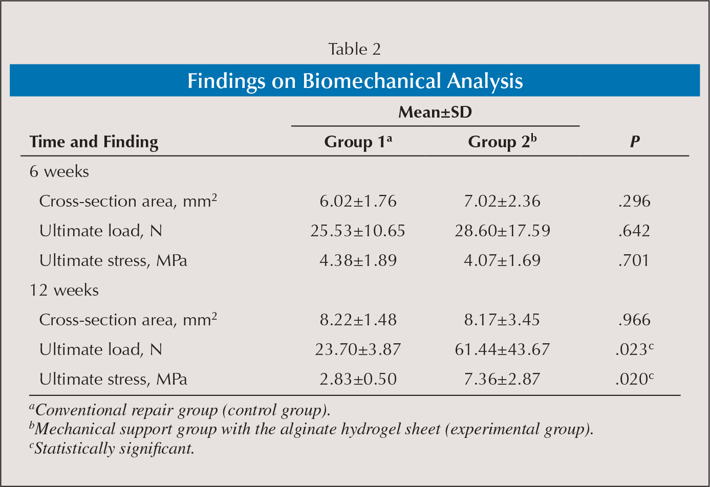 Findings on Biomechanical Analysis