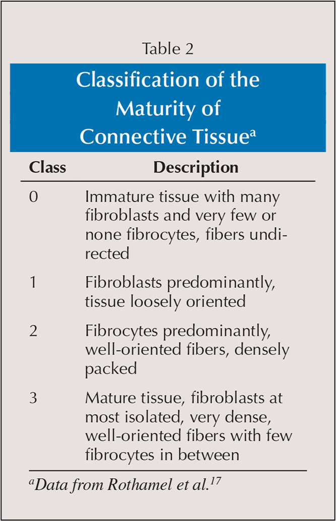 Classification of the Maturity of Connective Tissuea