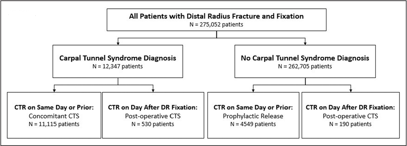 Flow diagram depicting the stratification of included patients and the interpretation of their carpal tunnel syndrome (CTS) based on timing of carpal tunnel release (CTR). Abbreviation: DR, distal radius.