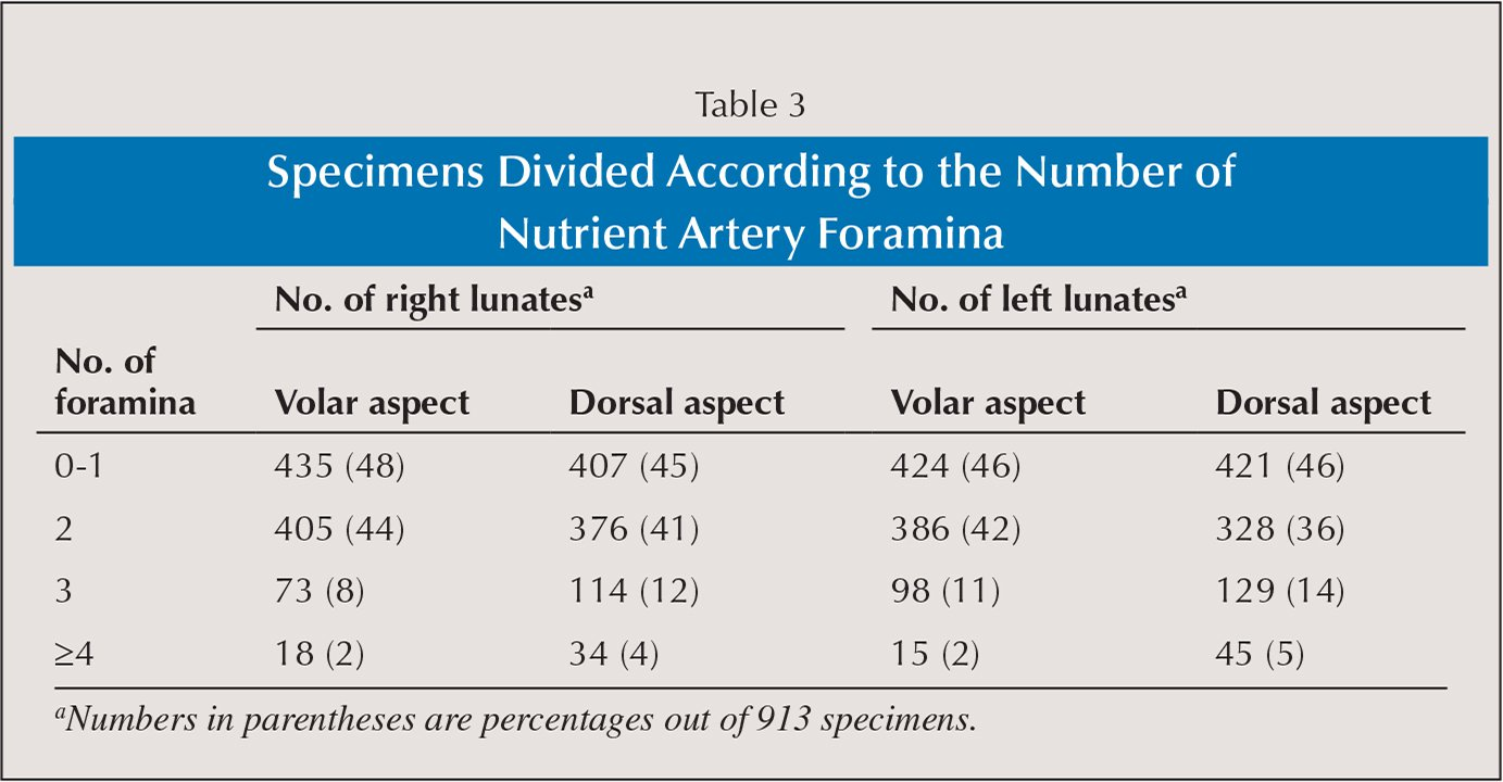 Specimens Divided According to the Number of Nutrient Artery Foramina