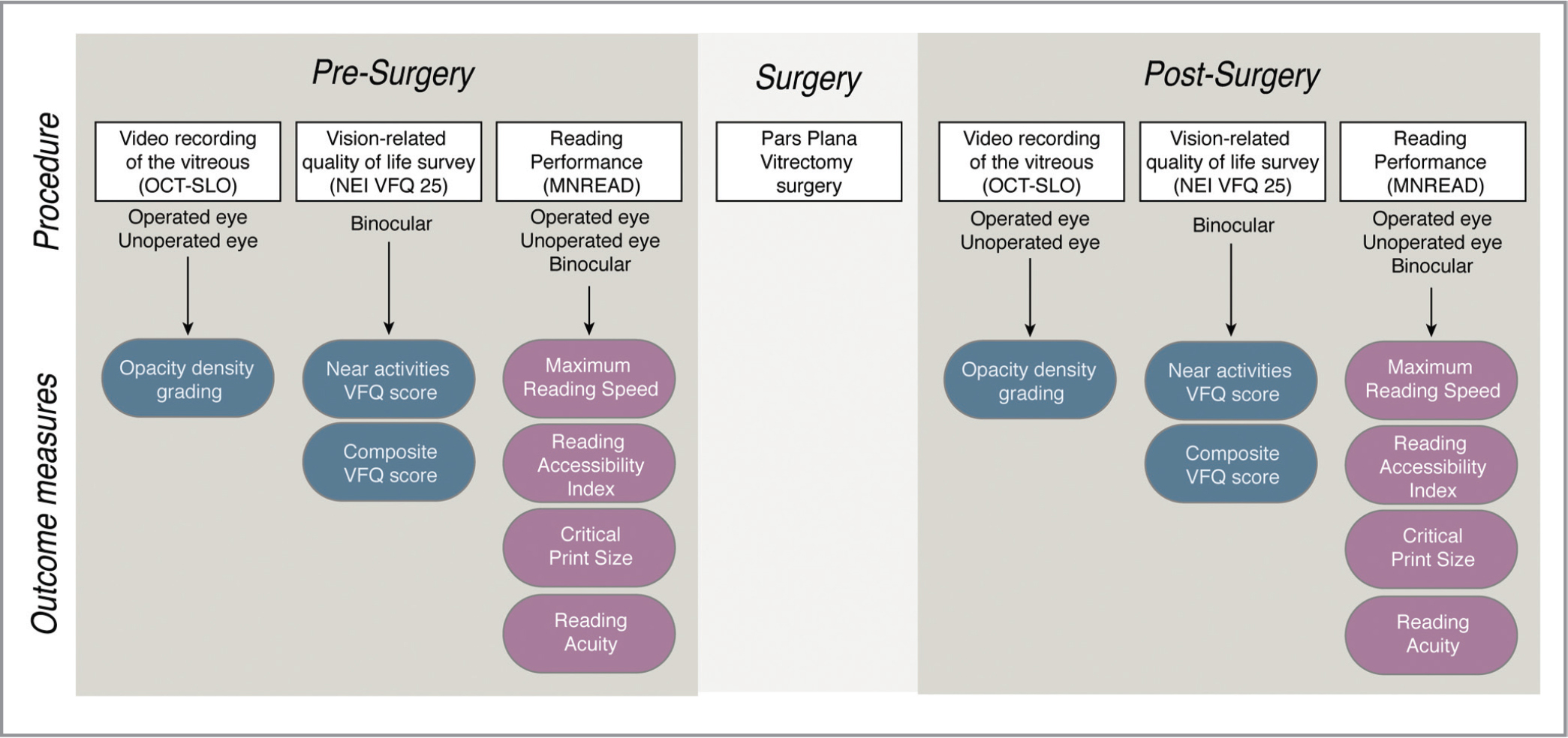 Protocol schematic showing the different test procedures along with the resulting outcome measures. Subjective measures are represented in blue; objective measures are represented in pink. OCT-SLO = optical coherence tomography scanning laser ophthalmoscope; NEI-VFQ = National Eye Institute Visual Function Questionnaire