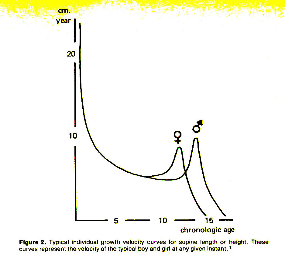 Figure 2. Typical individual growth velocity curves for supine length or height. These curves represent the velocity of the typical boy and girl at any given instant.