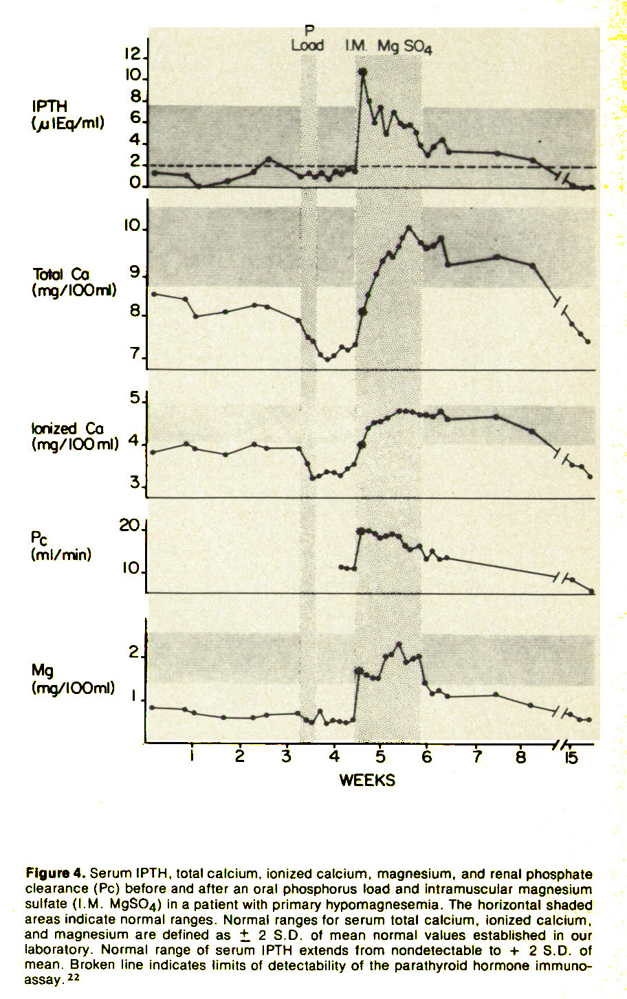 Figure 4. Serum IPTH, total calcium, ionized calcium, magnesium, and renal phosphate clearance (Pc) before and after an oral phosphorus load and intramuscular magnesium sulfate (I. M. MgSO/i) in a patient with primary hypomagnesemia. The horizontal shaded areas indicate normal ranges. Normal ranges for serum total calcium, ionized calcium, and magnesium are defined as + 2 S.D. of mean normal values established in our laboratory. Normal range of serum IPTH extends from nondetectable to + 2 S.D. of mean. Broken line indicates limits of detectability of the parathyroid hormone immunoassay. 22
