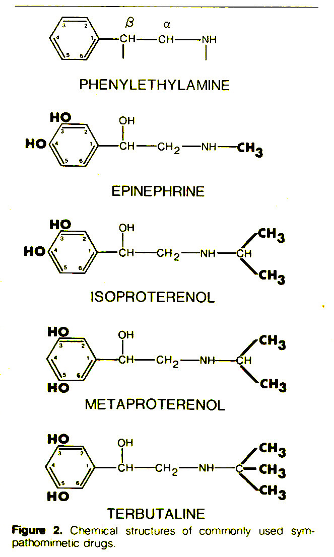 Figure 2. Chemical structures of commonly used sympathomimetic drugs