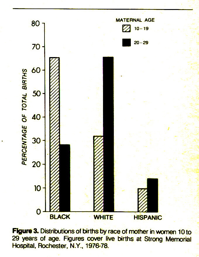 Figure 3. Distributions of births by race of mother in women 10 to 29 years of age. Figures cover live births at Strong Memorial Hospital, Rochester, N.Y., 1976-78.