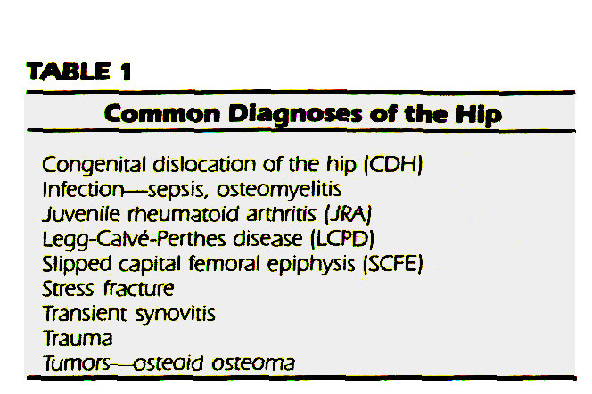 TABLE 1Common Diagnoses of the Hip