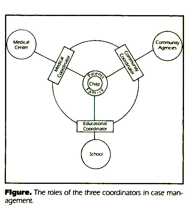 Figure. The roles of the three coordinators in case management.