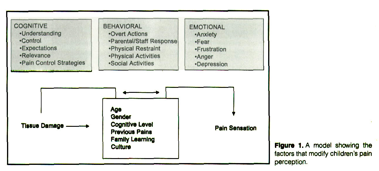 Figure 1.A model showing the factors that modify children's pain perception.