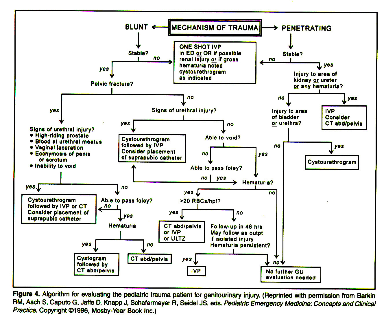 Figure 4. Algorithm for evaluating the pediatrìe trauma patient tor genitourinary injury. (Reprinted with permission from Barkin RM1 Asch S, Caputo G, Jaffa D, Knapp J, Schafermeyer R1 Seidel JS, eds. Pediatrìe Emergency Medicine: Concepts and Clinical Practice. Copyright ©1996, Mosby-Year Book (nc.)