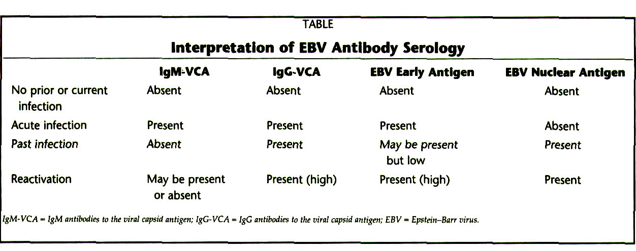 TABLEInterpretation of EBV Antibody Serology