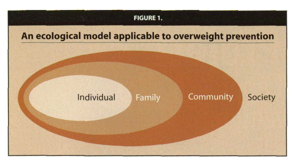 FIGURE 1.An ecological model applicable to overweight prevention