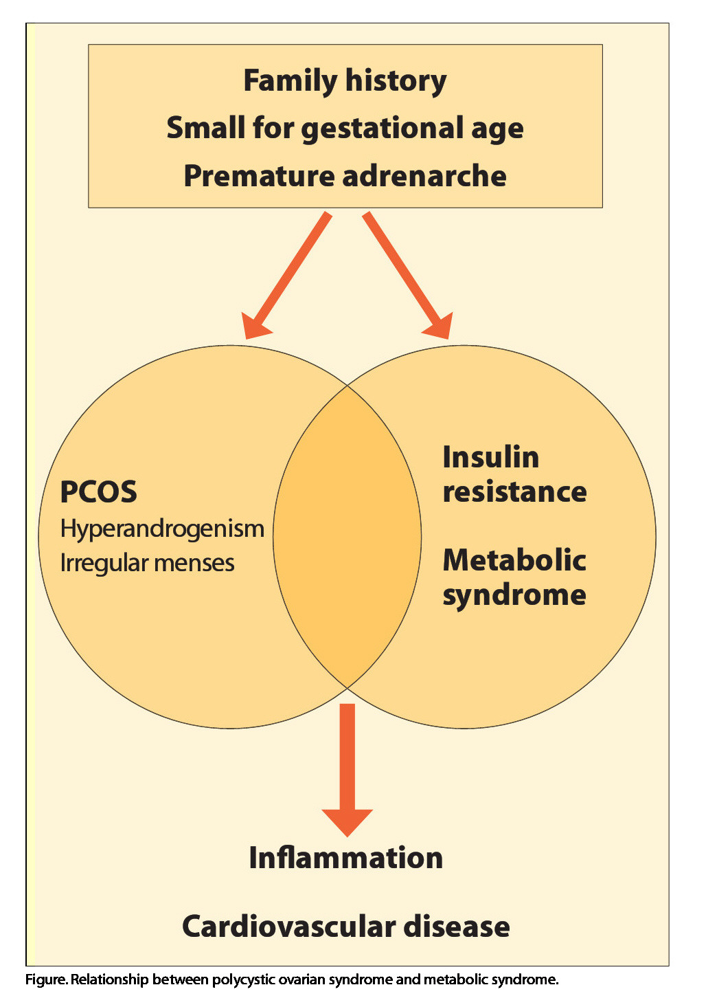 Figure. Relationship between polycystic ovarian syndrome and metabolic syndrome.