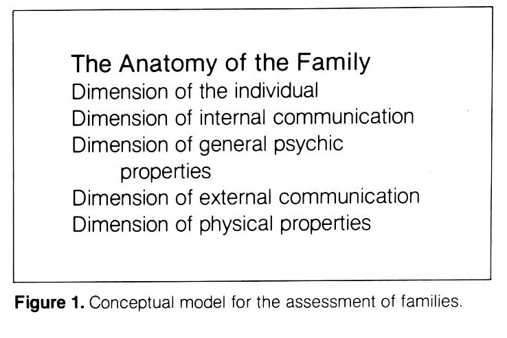 Figure 1. Conceptual model for the assessment of families.