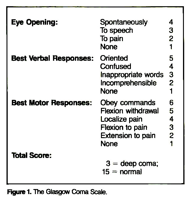 Figure 1. The Glasgow Coma Scale.
