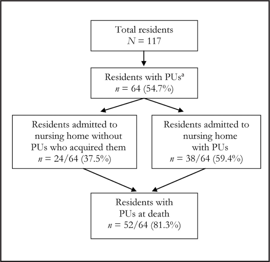 Incidence of Pressure Ulcers (PUs) in Nursing Home Residents. a Data on the Time of PU Acquisition Are Missing for 2 Residents Who Died with PUs.