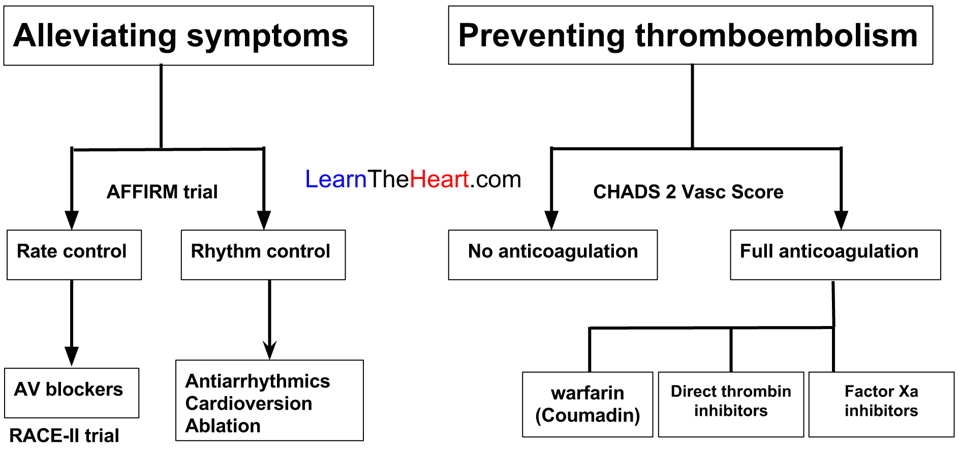 Atrial flutter: causes, diagnosis, treatment 94