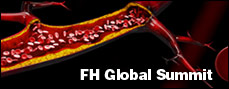 FH Global Summit