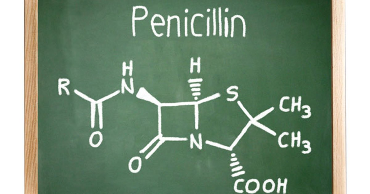 Chemical composition of penicillin